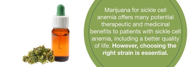 Medical Marijuana and Sickle Cell Anemia - Marijuana Doctors