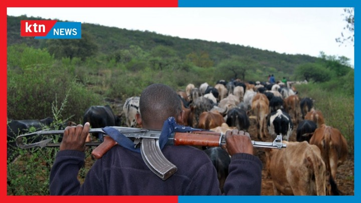 Tension remains high in Ol-Moran area in Laikipia after a series of bandit  attacks & cattle rustling - YouTube