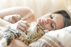 Pets and Their Spiritual Impact on Our Lives | Table for Change