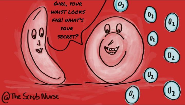 hematology & oncology - The Scrub Nurse