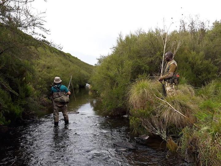Mt Kenya National Park Fishing Day Trip | Lake Rutundu Trout Fish | Fishing  trip, Fishing tours, Trip