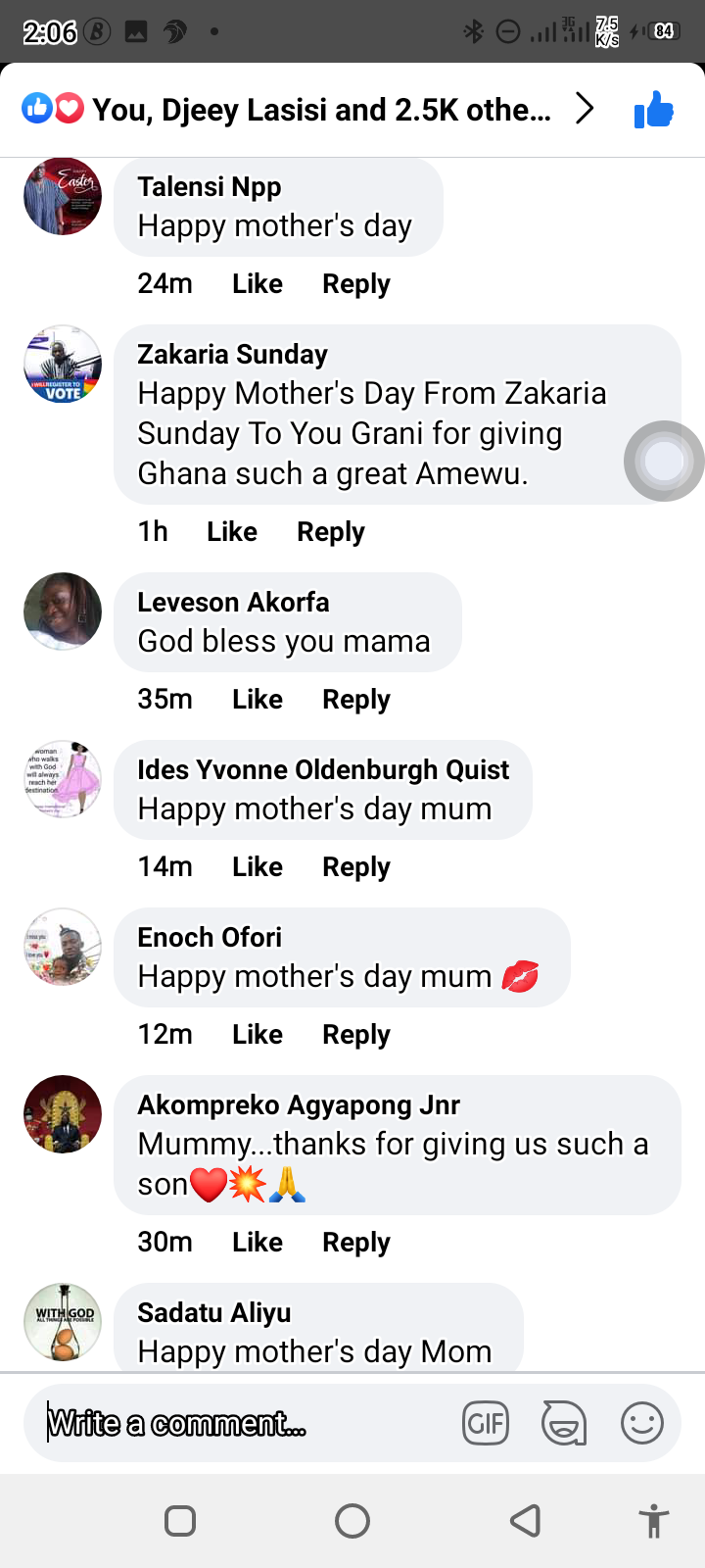 Massive reaction after Hon. Peter Amewu show off his mother. 11