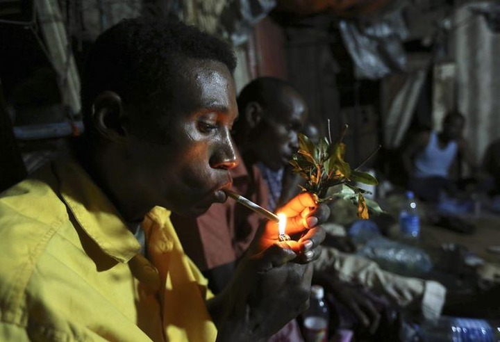 """Somali """"paradise flower"""" chewers savour low-price bliss after UK ban 