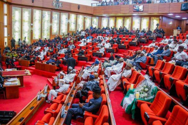 Senate by-election: Case for a cerebral candidate - LawCareNigeria