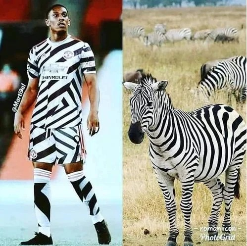 Zebra Crossing United Manchester United And Chelsea Third Kits Brutally Trolled By Their Fans Opera News