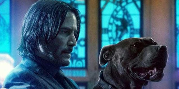 Keanu Reeves as John Wick and Dog in John Wick 3 Parabellum