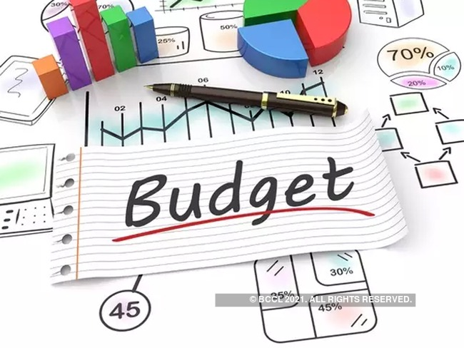 Importance of Budget: Why is it important for the government to have a  budget?