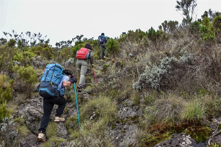 Elephant Hill Aberdares Day Hike - Africa Outdoors Ltd