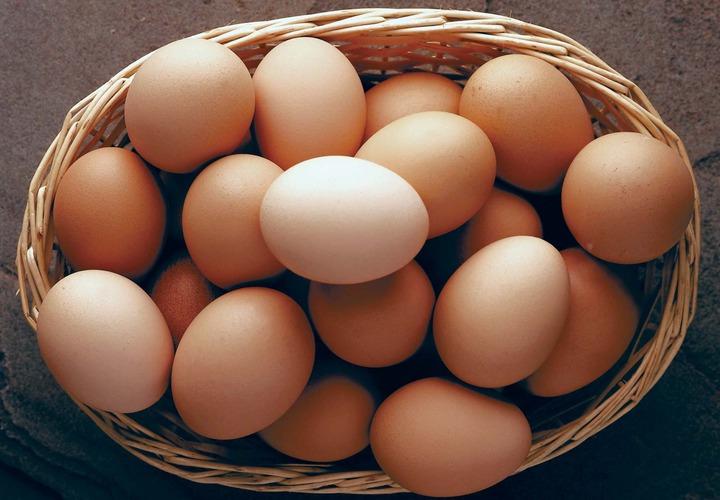 egg   Definition, Characteristics, & Nutritional Content   Britannica
