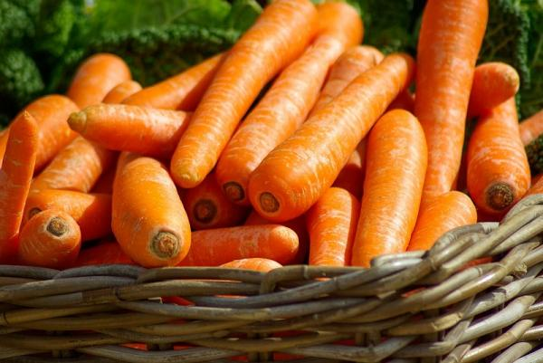 Carrot and coconut milk treatment for hair - Benefits of carrot for hair