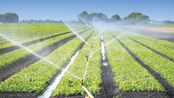 Expanding irrigation facilities for food production — Features — The  Guardian Nigeria News – Nigeria and World News