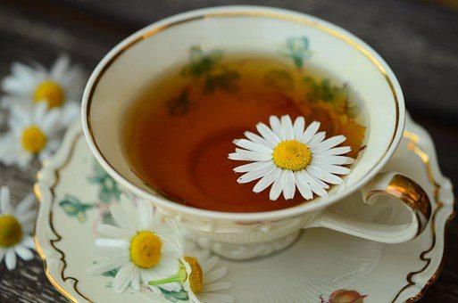 Chamomile, Camomile Tea, Cup, Gold Rim
