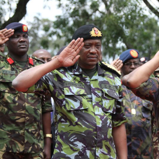 Why I envy Uhuru in his military regalia - The Standard Entertainment