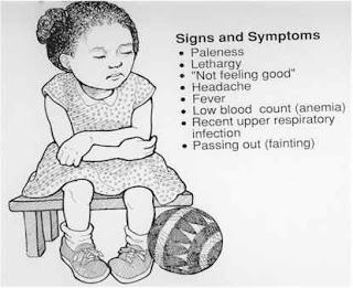 22 Sickle Cell Education ideas   sickle cell, sickle, sickle cell disease
