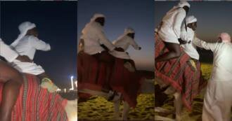 I want to get down -'Fearo' Shatta Bandle screams as he goes on camel ride in Dubai (video)