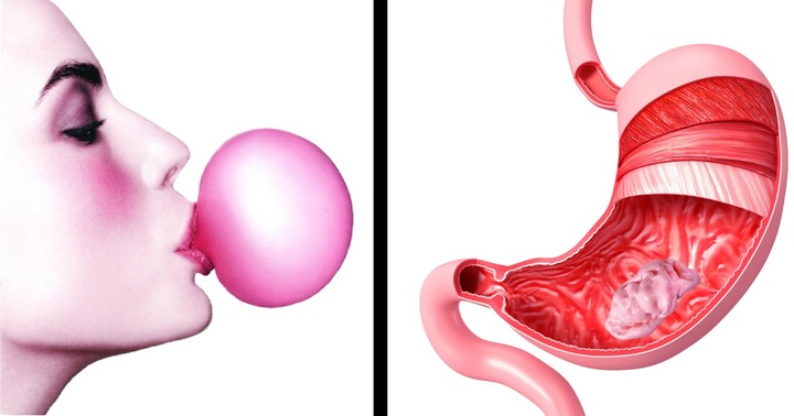 What Really Happens When You Swallow Chewing Gum – Health Help