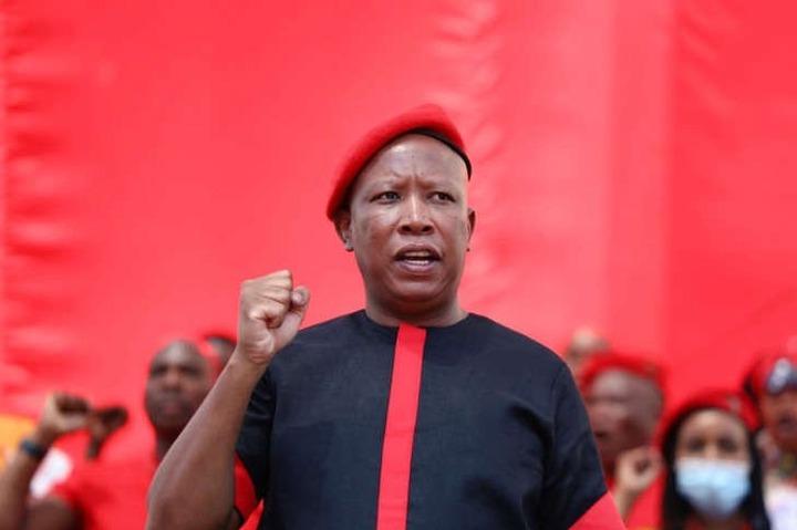 EFF leader Julius <a class=
